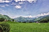 Pyrenees Mountains Landscape — Stock Photo