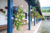 Flowers in pots, in an old hacienda — 图库照片