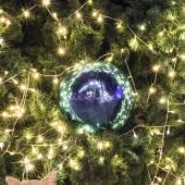 Iluminación del árbol de navidad — Foto de Stock