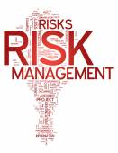Word Cloud Risk Management — Stock Photo