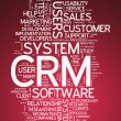 Word Cloud CRM - Customer Relationship Management — Stock Photo #54239761