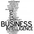 Word Cloud Business Intelligence — Stock Photo #54496549