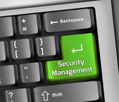 Keyboard Illustration Security Management — Zdjęcie stockowe