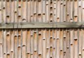 Staket av bambu — Stockfoto