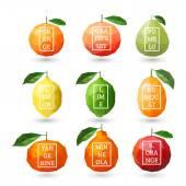 Set of polygonal citrus fruit - lemon, grapefruit, pomelo, orange, lime, kumquat, tangerine, minneola, red orange with design inscription. Vector illustration — Stock Vector