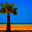 A digitally converted painting of a lone palm tree at the seaside — Stock Photo #66381797