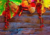 A digitally constructed painting of Colorful autumn leaves and pods arranged on stripped bark. — Stock Photo