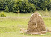 Old traditional haystacks, typical Romanian  rural scene — Stock Photo