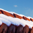 Close Up red ceramic roof shingles — Stock Photo #64629789
