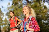 Hiking girls walking in forest — Stock Photo