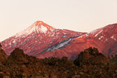 Nature scenery at from Teide national park — Stock Photo