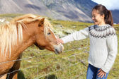Woman petting Icelandic horses in sweater — Stock Photo