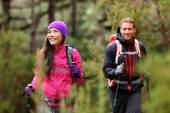 Hikers trekking in forest on hike — Foto Stock