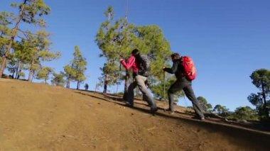 Trekking hikers on mountain — Stock Video