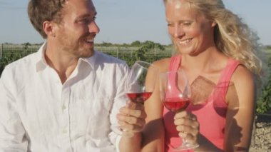Couple at vineyard laughing toasting — Stock Video
