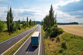 The rural landscape with a highway leading poplar alley — Stock Photo