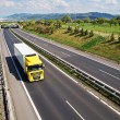 Corridor highway with the transition for wildlife, the highway goes yellow truck — Stock Photo #61340849