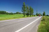 Empty road lined with poplar alley in the countryside, in the distance passing red truck — Stock Photo