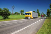 Road lined with trees in a rural landscape, three passing colored trucks — Stock Photo