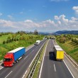 Corridor highway with the transition for animals, the highway ride colored and white trucks — Stock Photo #64836749