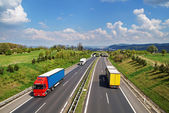 Corridor highway with the transition for animals, the highway ride colored and white trucks — Stock Photo