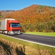 Red truck on the road under the wooded mountain of colorful autumn colors — Stock Photo #65011489