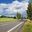 Road with poplar alley. The red truck and the column of cars arrives from afar. — Stock Photo #65569853