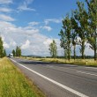 An empty road lined with poplar alley, coming from afar white truck — Stock Photo #65570299