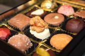 Chocolade-collectie — Stockfoto