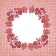Pink frame with geranium flowers — Stock Photo #53644863