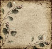 Old background with leaves — Stock Photo