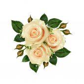 Цветочный букет белой розы — Стоковое фото