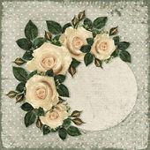Rose flowers frame  — Stockfoto