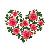 Rose flowers heart — Stock Photo