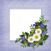 Wild flowers bouquet and card — Stockfoto