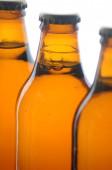 Beer fresh bottle — Stock Photo
