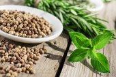 Fresh oregano,peppercorns and rosemary — Stock Photo
