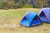 Tenda a cupola su erba verde — Foto Stock