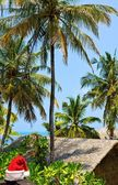 Seascape With Santa Hat, Maldives — ストック写真