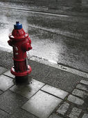 Fire Hydrant in the Rain — Stock Photo