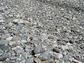 Stones and Pebbles — Stock Photo