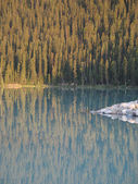 Evergreen Reflections in Lake — Stock Photo