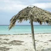 Parasol on an abandonned beach — 图库照片