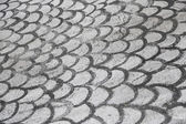 Drawn Fish Gills on Asphalt — Stock Photo