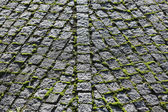 The Unusual Shape of the Cobbles in Three Branches — Stock Photo