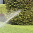 Gardening. Lawn Sprinkler Spraying Water Over Green Grass in Garden — Stock Photo #57161099
