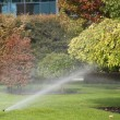 Lawn Sprinkler Spraying Water Over Green Grass — Stock Photo #62461723