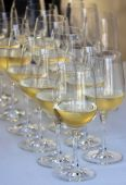 White Wine Glasses — Stock Photo