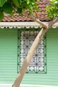 Tree before barred window — Stock Photo