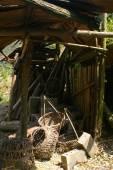 Industrial Logging — Stock Photo